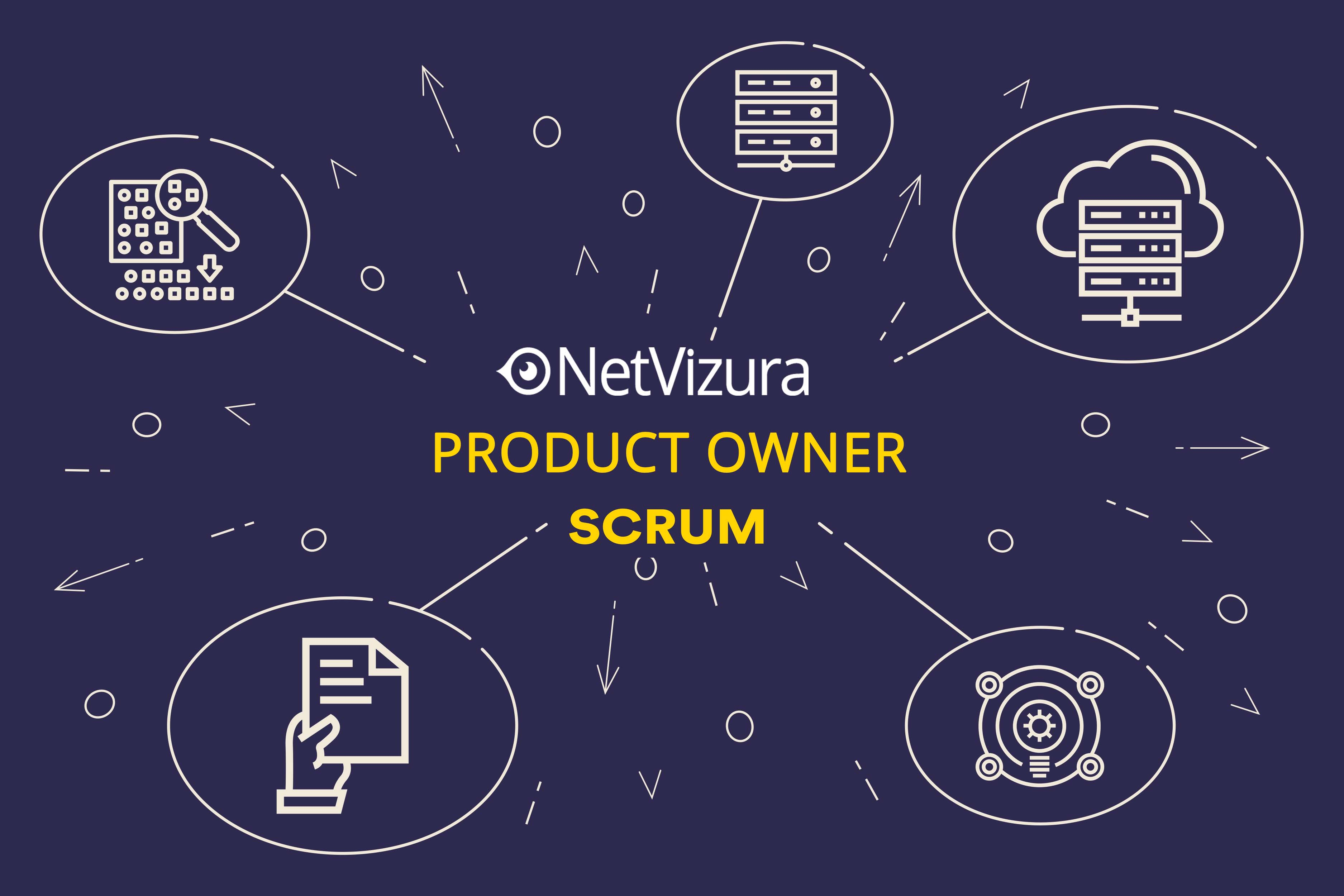 NetVizura Product owner